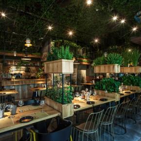 这家餐馆摆满绿植,不只为看,还能吃