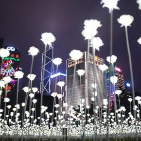 """25000朵LED白玫瑰 造出香港""""最浪漫""""情人节"""