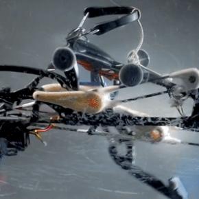 在别的机器人还在学走路的时候,这只鸵鸟已经在蒙眼狂奔了