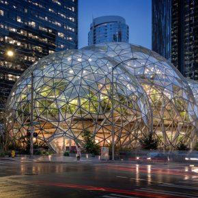 西雅图也有热带雨林?还能在它下面用餐!