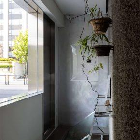 Creative Studio Unravel丨Taste of Plant