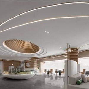 共生形态   奥飞文创中心A8栋展示中心